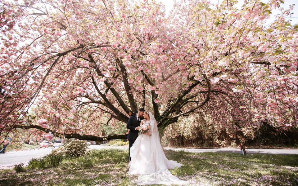 Bride and groom under flowering tree
