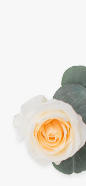wedding catering background flower right